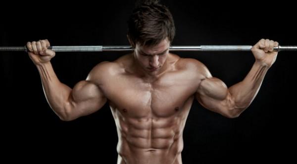 músculos corporais