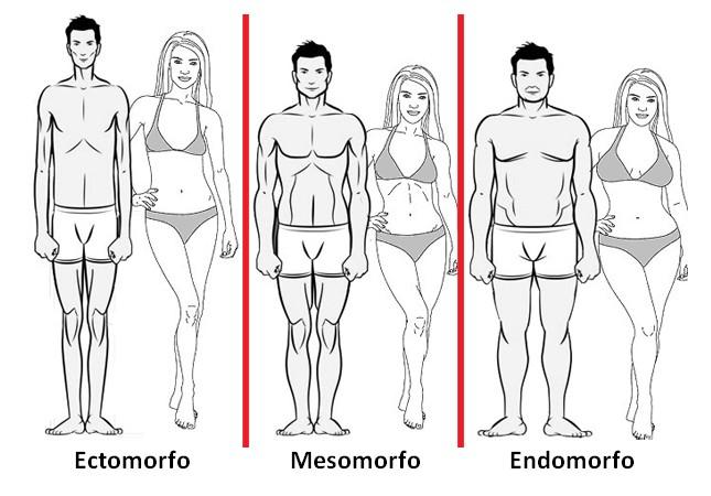 Imagem de tipos de corpo